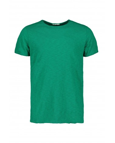 T-shirt M/m Scout (10184-verde-green ) SCOUT 15,01€